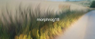 morphrog18-768x321