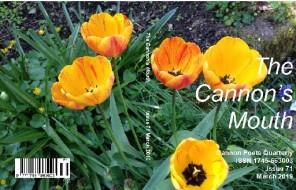 TCM71_Cover